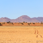 NamibRand Road