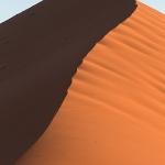 Dune 40 Rising