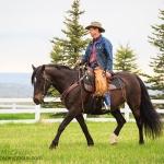 Morgan Under Saddle