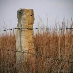 Limestone Fencepost